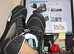 rice_collection_0915.jpg